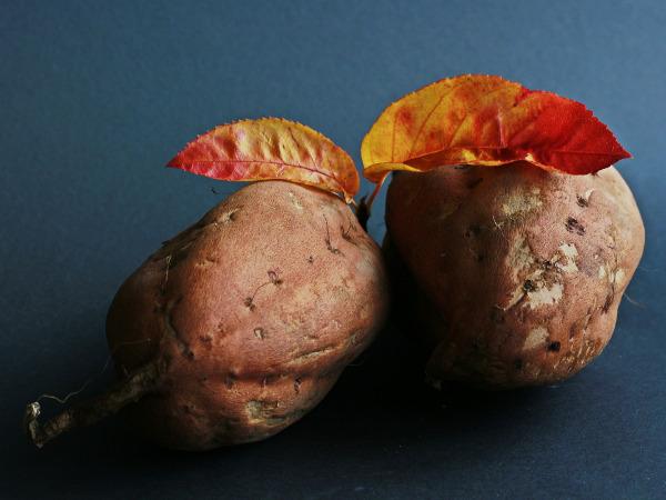 Suesskartoffel Die Süßkartoffel - Lebensmittel des Monats auf Mallorca