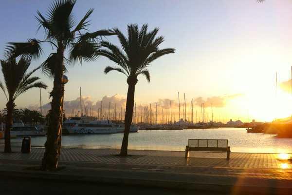 jachten-sonnenaufgang-palma Palma de Mallorca für Fortgeschrittene – zu Gast in der Hauptstadt